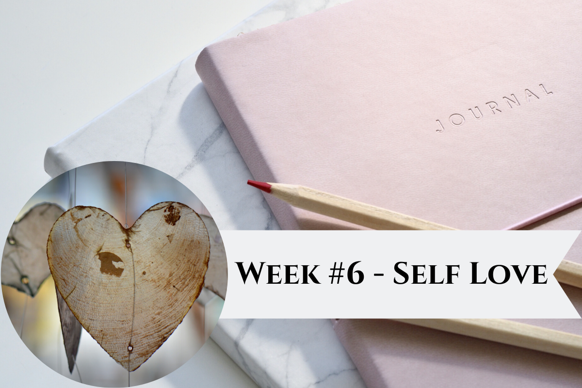 Featured-Image-Week-6.png